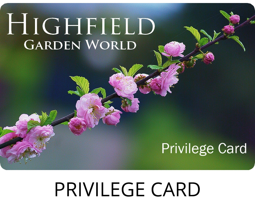 Highfield Privilege Card