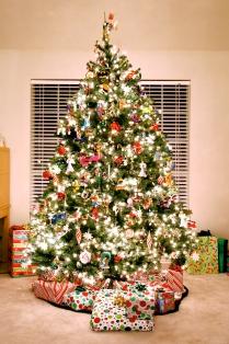 Decorated Christmas tree.jpg