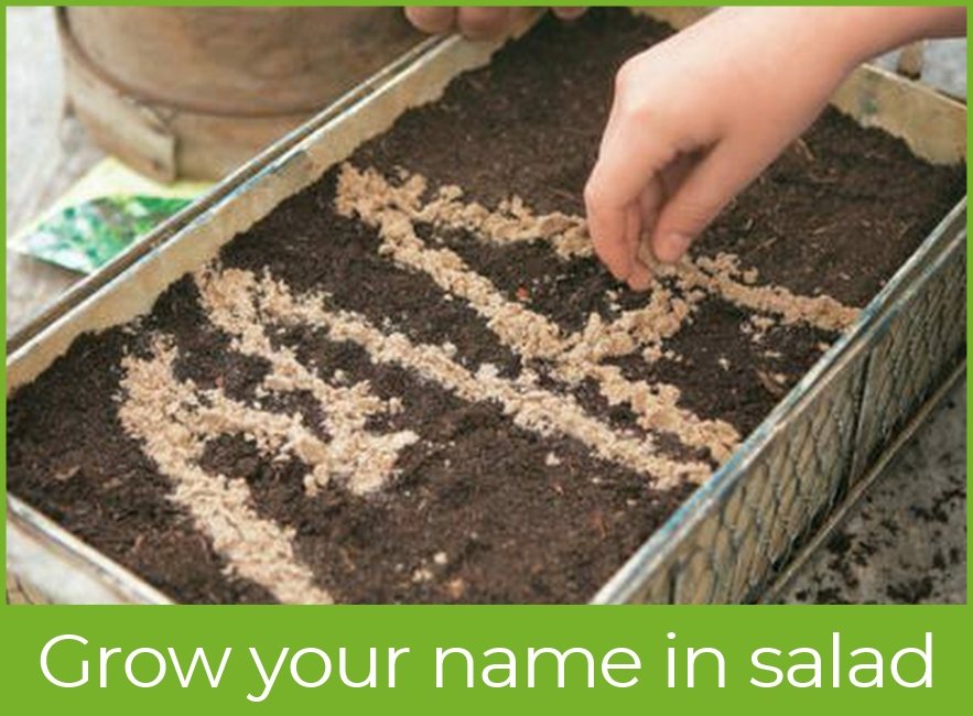 Write you name in salad